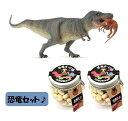 【当店でしか買えません】大人気 collecta (コレクタ)恐竜 ダイナソー テラノサウルス ストルティオミムス捕獲 88573 フィギュア & 恐竜ボーロ 50g 2個 (2種 3個セット)たまごボーロ(卵ボーロ)子供 男 グッズ 誕生日 誕生日プレゼント おもちゃ 2020
