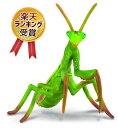 【大人気】collecta (コレクタ) 昆虫 カマキリ 自然 フィギュア 標本 絵本 おもちゃ 大人 子供 グッズ