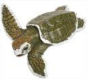 樂天商城 - TST safari (サファリ) ケンプヒメウミガメベビー 亀 カメ フィギュア おもちゃ 267429