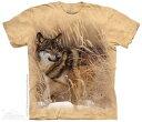 樂天商城 - The Mountain Tシャツ Winter Wolf Portrait T-Shirt ウルフ 狼 (メンズ 男性用 男女兼用) S-2L【輸入品】半袖 マウンテン 動物