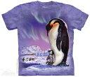 The Mountain Tシャツ Papa Penguin T-Shirt ペンギン 人鳥 (メン