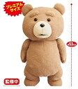 Ted2 ぬいぐるみXL プレミアム 53cm テッド