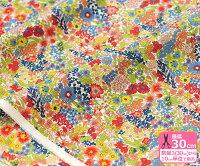 【LIBERTY・リバティプリント】Margaret Annie / マーガレット・アニー廃盤色AEタナローン3638758 AE