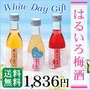 【送料無料】期間限定商品ホワイトデーギフト はるいろ梅酒 [サプライズ ホワイトデ