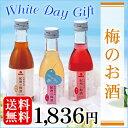 【送料無料】期間限定商品ホワイトデーギフト 梅のお酒 [サプライズ ホワイトデー