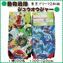 【動物戦隊ジュウオウジャー/100-120cm】男児天スパンブリーフ2枚組(綿100%)