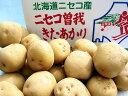 最高級越冬じゃがいも北海道ニセコ 曽我(ソガ)北あかりLサイズ5Kg約30個