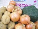北海道産極上じゃがいも玉ねぎかぼちゃ大玉1玉北海道大地の恵セット