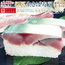 [冷蔵]極厚 福井の生さば寿司【通常サイズ】届いたその日が旬の味わい[生鯖寿司お取り