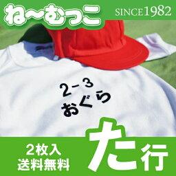 ゼッケン フロッキーネーム特大◆た行◆ 2枚入 【日本製】 ワッペン ひらがな 名前シール ゼッケン 体操着