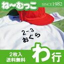 フロッキーネーム特大◆わ行◆ 2枚入 【日本製】 ワッペン ひらがな 名前シール ゼッケン 体操着