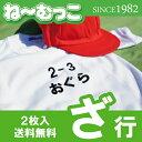 フロッキーネーム特大◆ざ行◆ 2枚入 【日本製】 ワッペン ひらがな 名前シール ゼッケン 体操着