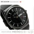スカーゲン 腕時計 チタニウム メンズ デイデイト オールブラック SKAGEN SKW6006【あす楽対応】