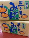 【最安値目指します!!】三ヶ日  青島みかん Lサイズ 優品 1ケース(約10kg)静岡県三ヶ
