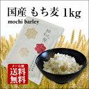 【新麦!】国産 もち麦 1kg 国内産 雑穀米に もちむぎで...