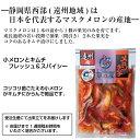 静岡県産 〈みかん蜜〉 抗生物質不使用・非加熱はちみつ  パウチタイプ2個セット
