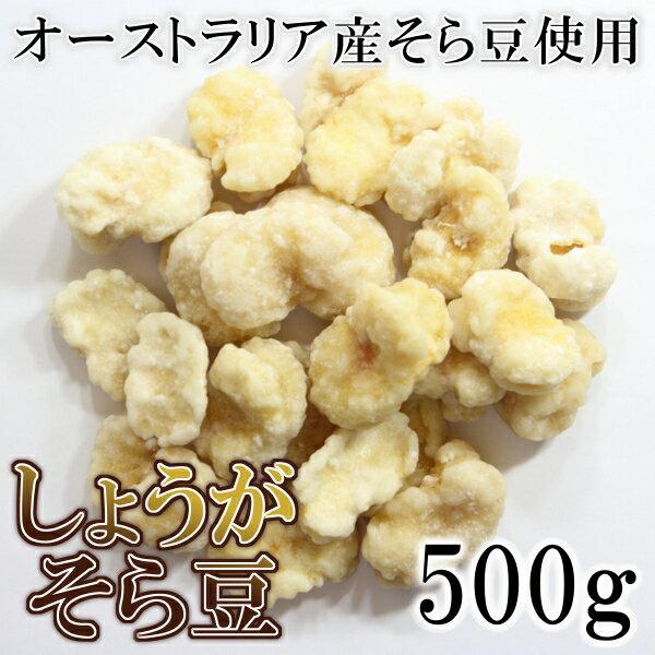 しょうがそら豆500g 南風堂 まとめ買い用大袋すりおろし生姜 オーストラリア産そら豆使用