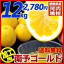 【送料無料】《加工用 河内晩柑》南予ゴールド12kg(サイズ...