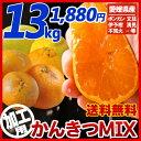 【送料無料】《加工用》南予のかんきつMIX13kg(サイズ ...