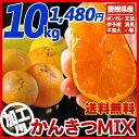 【送料無料】《加工用》南予のかんきつMIX10kg(サイズ ...