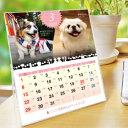 ショッピング卓上カレンダー 2020年 犬づくし卓上カレンダー