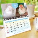 ショッピング卓上カレンダー 2020年 コザクラづくし卓上カレンダー