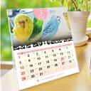 ショッピング卓上カレンダー 2020年 セキセイづくし卓上カレンダー