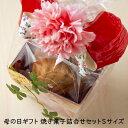【やさい菓子工房ココアイ 遅れてごめんね母の日ギフト 焼き菓...
