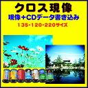 【返送料無料】 クロス現像+CDデータ書き込み  FUJI  KODAK AGFA LOMO  のリバーサルフィルムから→C−41現像   135 120 2..
