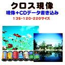 クロス現像+CDデータ書き込み  FUJI  KODAK AGFA LOMO  のリバーサルフィルムから→C−41現像   135 120 220  1本から受付