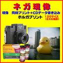 HOLGA で撮った ブローニーフィルム ネガ現像  同時プリント FUJI PRO400  Kodak Ektar PORTRA  120 フィルム 1本から受付