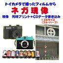 トイカメラで撮った ネガ現像  同時プリント+CDデータ書き込み FUJI REALA NATURA  Kodak Ektar PORTRA  1本から受付
