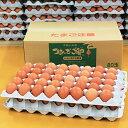 【採れたて新鮮農場直送!】つまんでご卵 大玉80個 ダンボールタイプ
