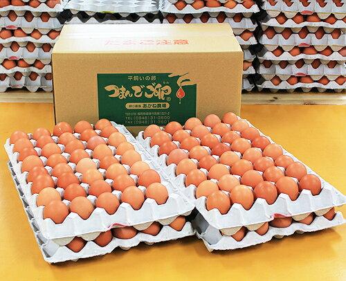 【採れたて新鮮農場直送!】つまんでご卵 大玉160個 ダンボールタイプ