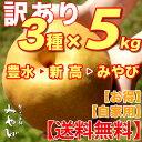 【送料無料/訳あり】和梨 5kg × 3種セット豊水+新高+みやびみやびのワケアリは他店とは、ひと味違います!梨 豊水梨 新高梨 にっこり 茨城 生産者直送