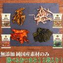 【送料無料】無添加 国産素材のおつまみ4種 選べるホタテ イカ 昆布 鮭 健康 お菓子 ほたて いか こんぶ さけ