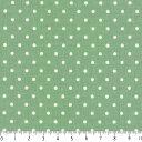 水玉ドット柄 生地 2.5mm 4989-40 GREEN グリーン dot 水玉 ドット 生地 ピンドット 布 2.5ミリ まわりを縫って風呂敷やカーテンにも 生成り オックス 生地 綿100% 110cm幅 カルトナージュ生地 nassen