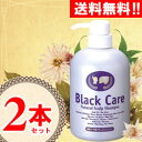 【7%OFF】ブラック・ケアシャンプー 2本 【ブラックケアシャンプー】【10P01Oct16】