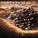 【自家焙煎スペシャルティコーヒー】モカ イルガチェフェ G2(中深煎り):200g [送料無料]