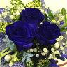 青い薔薇【バラ】 ブルーローズ レインボーローズ フラワー【花】花束【ギフト】【メッセージカード無料】【楽ギフ_包装】【楽ギフ_メッセ入力】【鮮度保持剤】【送料無料】【楽ギフ_ メッセージカード】【RCP】02P23Apr16