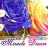 ミラクルドリーム〜miracle dream〜◎【ギフト】【誕生日】【メッセージカード無料】【楽ギフ_メッセ入力】【鮮度保持剤】 【楽ギフ_ メッセージカード】【RCP】02P01Oct16