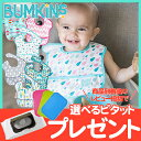 バンキンス (Bumkins) スーパービブ 3枚パック 6ヶ月〜2歳【ナチュラルリビング】