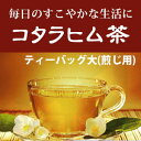 コタラヒム茶 ティーバッグ大 煎じ用