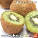 有機キウイフルーツ3kg神奈川県小田原産【送料無料 オーガニック 有機JAS】
