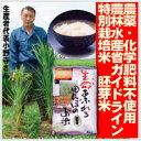 【生命あふれる田んぼのお米・胚芽米20kg】(4kg×5袋)産地直送