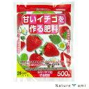 【肥料】 甘いイチゴを作る用 500g 有機肥料含有(郵便配送商品)