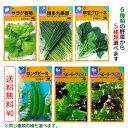 【種】選べる野菜の種5袋セット (メール便配送商品)同じ物を選んでも大丈夫です!