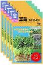 【種】 スプラウト 豆苗(とうみょう) 種60ml 5袋セット(メール便配送商品)