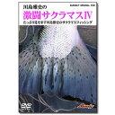 バスデイ オリジナルDVD 激闘サクラマスIV DVD約72分