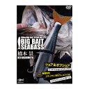 釣りビジョン ビッグベイト シーバス RUN&GAN SALT VOL.2 DVD120分